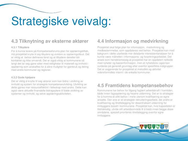 Strategiske veivalg: