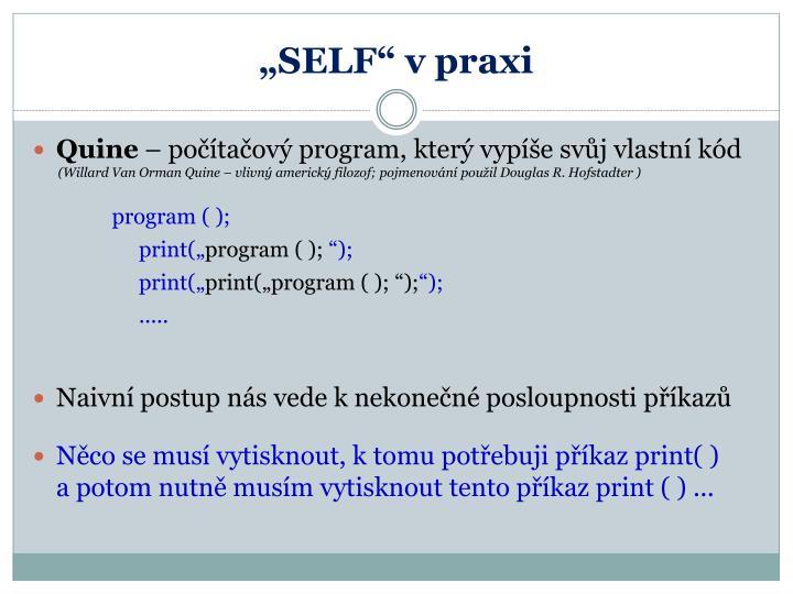 """SELF"" v praxi"