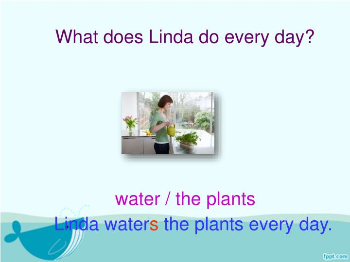 What does Linda do every day?