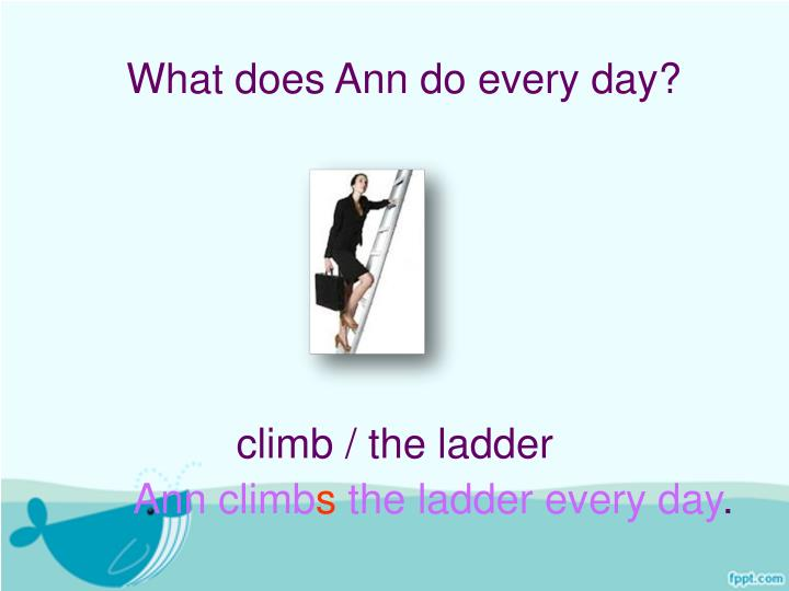 What does Ann do every day?