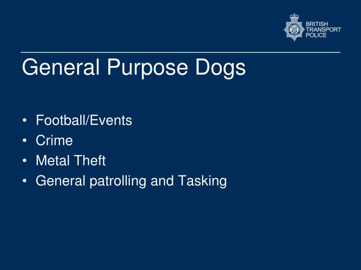 General Purpose Dogs