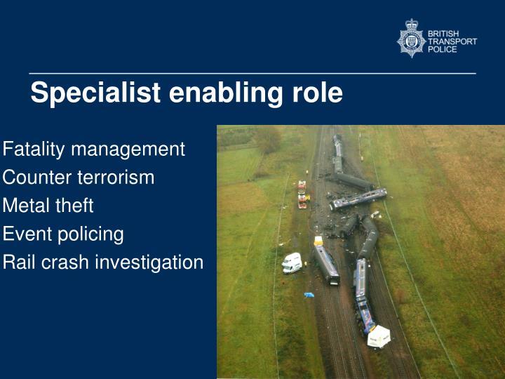 Specialist enabling role