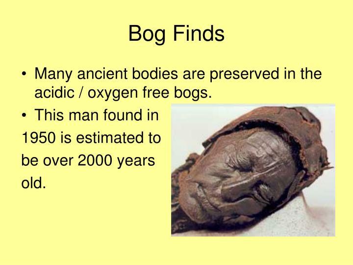 Bog Finds