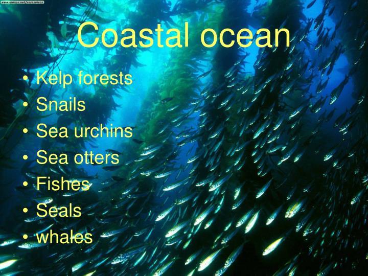 Coastal ocean
