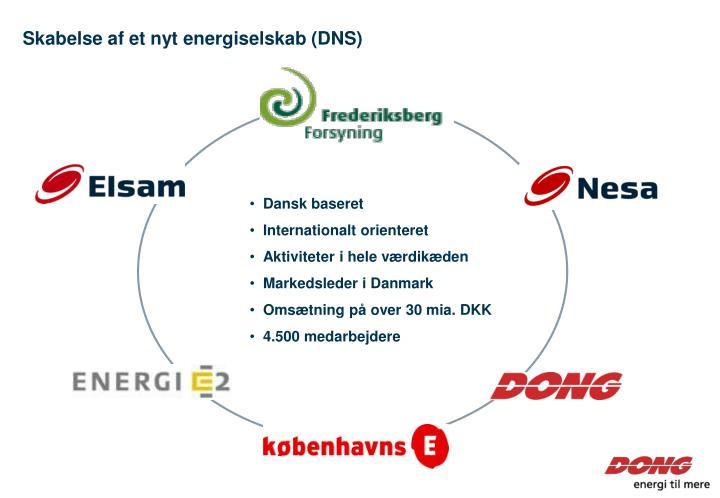 Skabelse af et nyt energiselskab (DNS)
