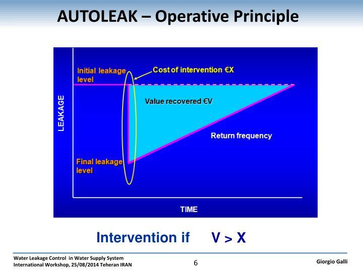 AUTOLEAK – Operative Principle