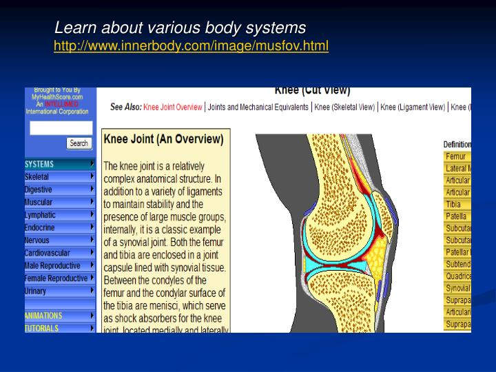 Learn about various body systems