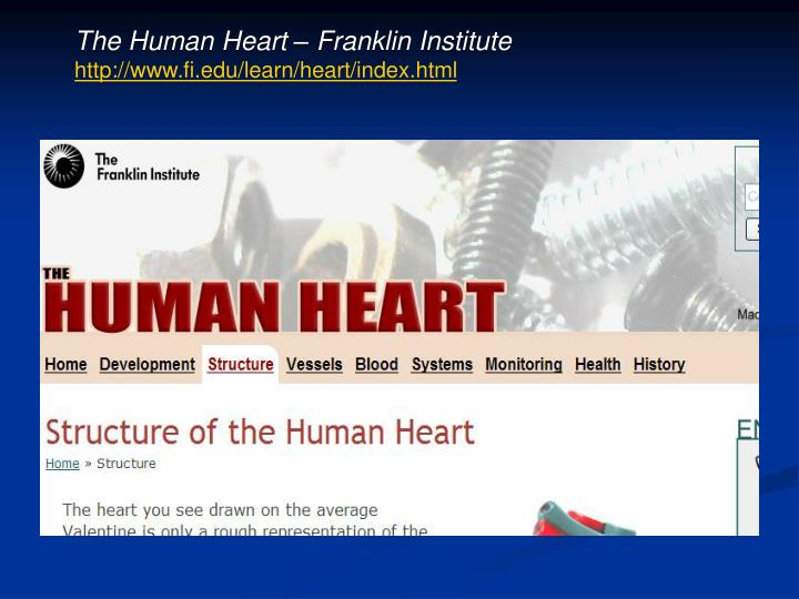 The Human Heart – Franklin Institute
