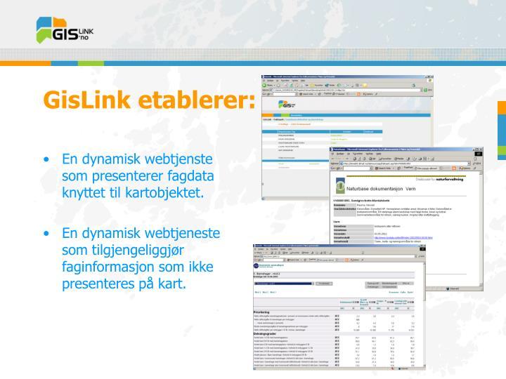 GisLink etablerer: