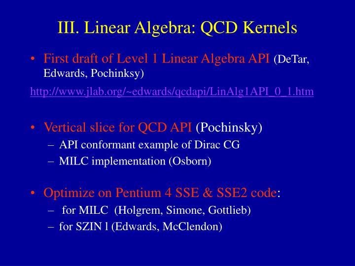 III. Linear Algebra: QCD Kernels