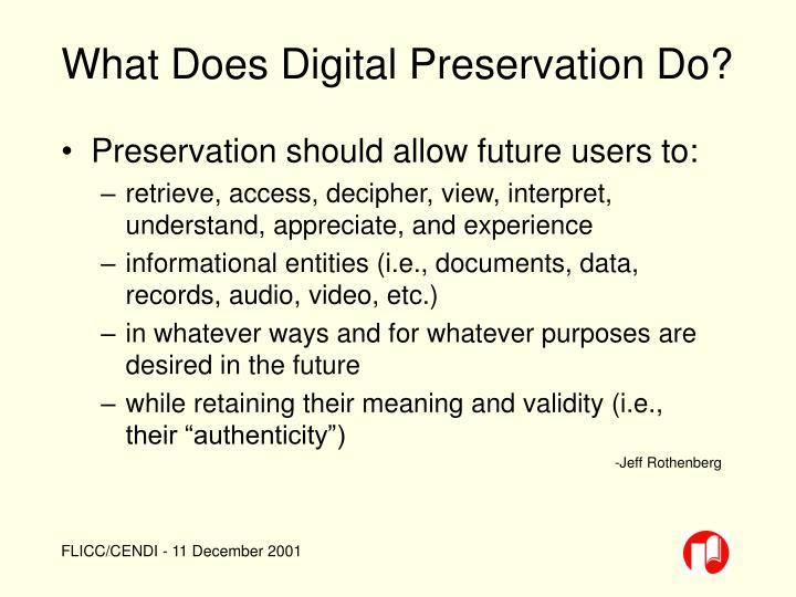 What Does Digital Preservation Do?