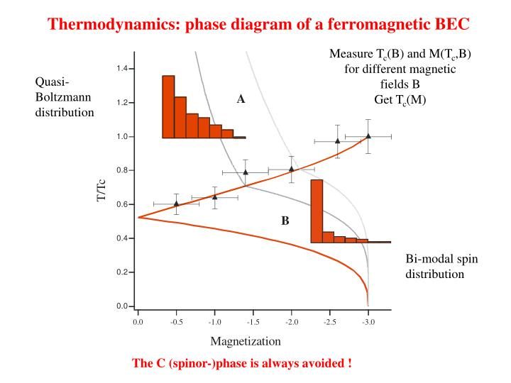 Thermodynamics: phase diagram of a ferromagnetic BEC