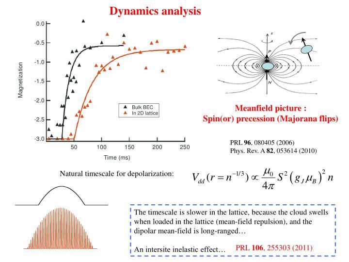 Dynamics analysis