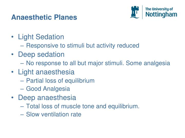 Anaesthetic Planes