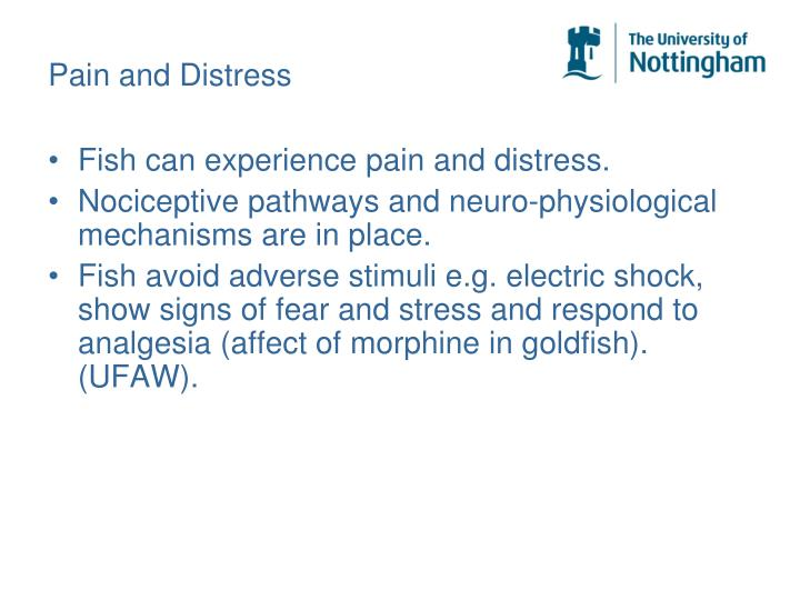 Pain and Distress