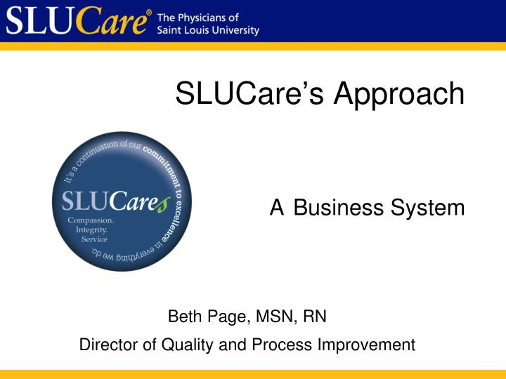 Slucare s approach a business system