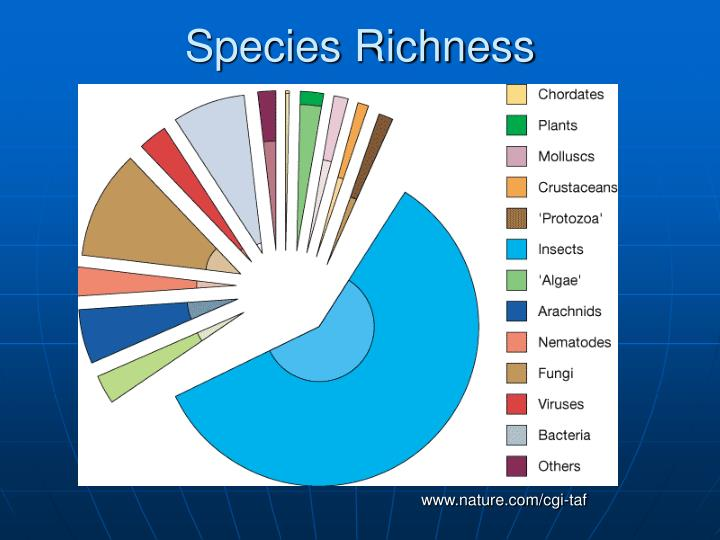 Species Richness
