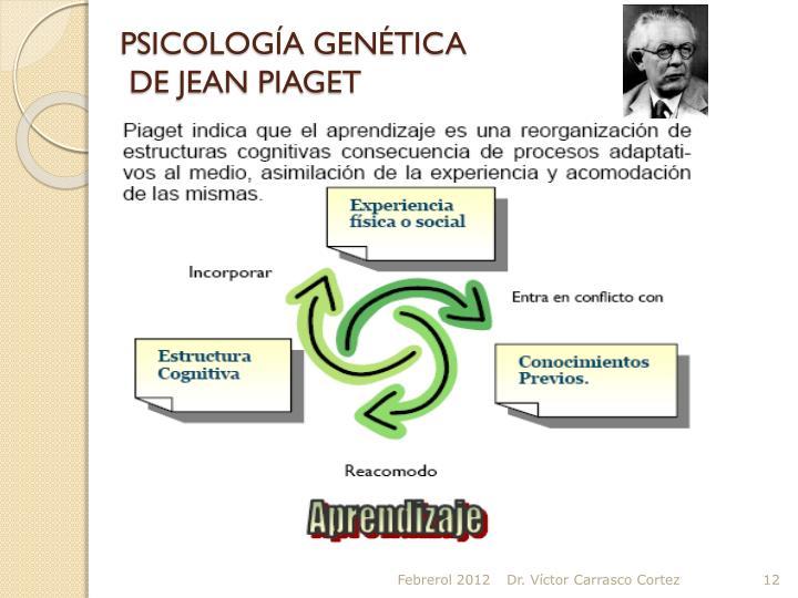 PSICOLOGÍA GENÉTICA
