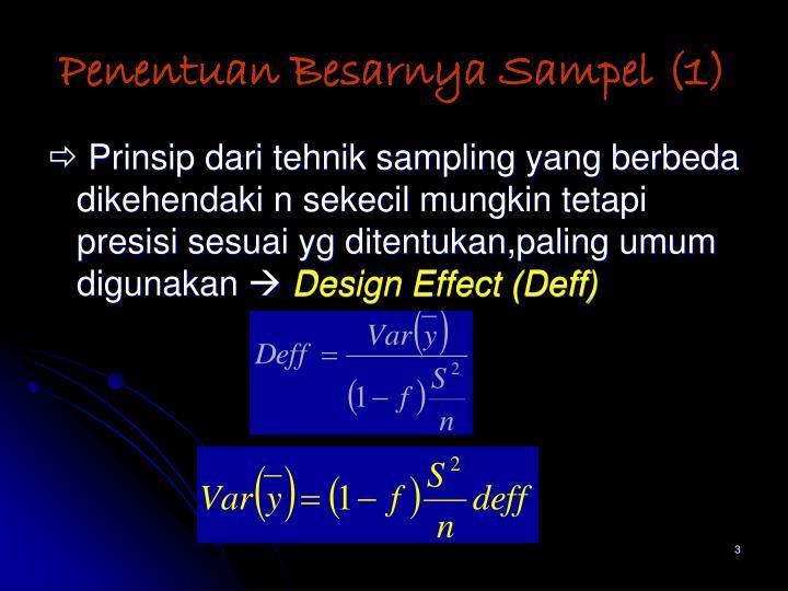 Penentuan Besarnya Sampel (1)