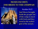 moses escorts the bride to the chuppah