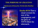 the purpose of creation messiah dwelling with his people
