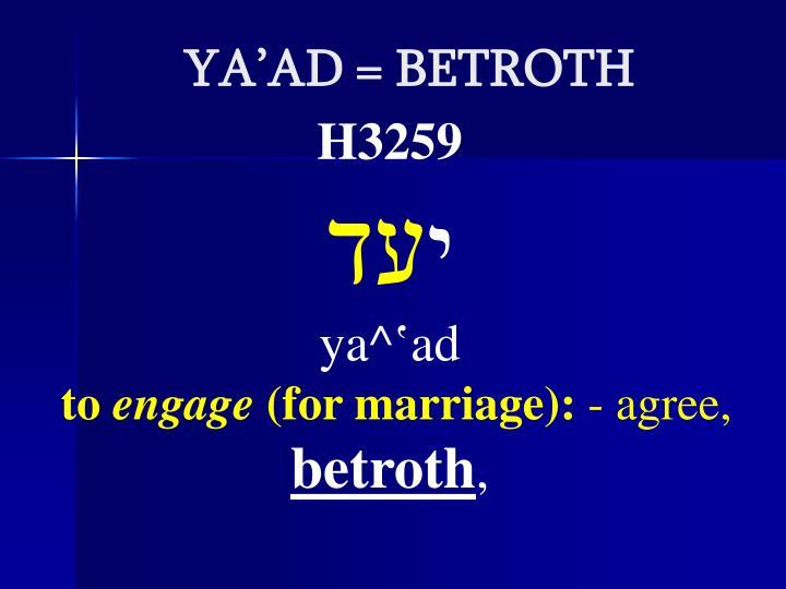 YA'AD = BETROTH