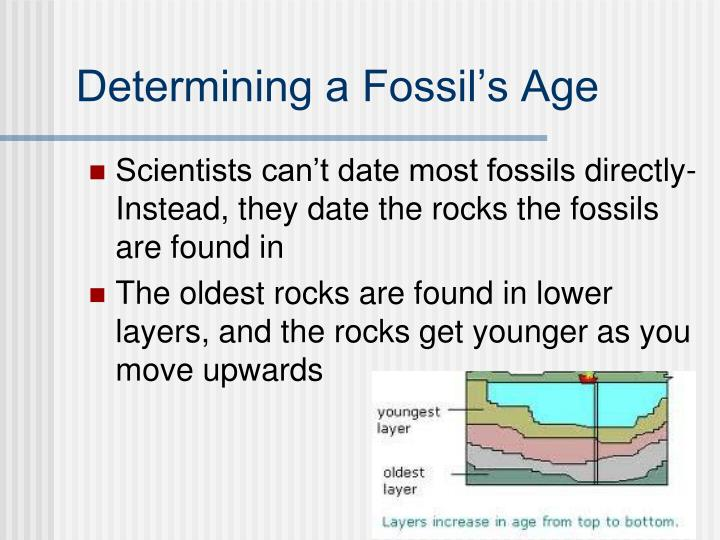 Relative dating age of fossils can be determined
