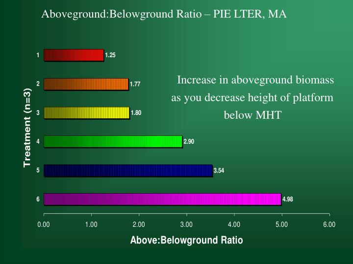 Aboveground:Belowground Ratio – PIE LTER, MA