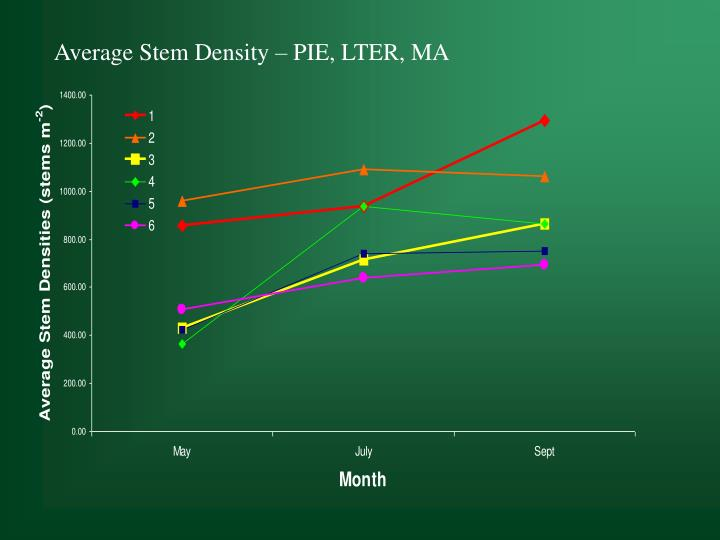 Average Stem Density – PIE, LTER, MA