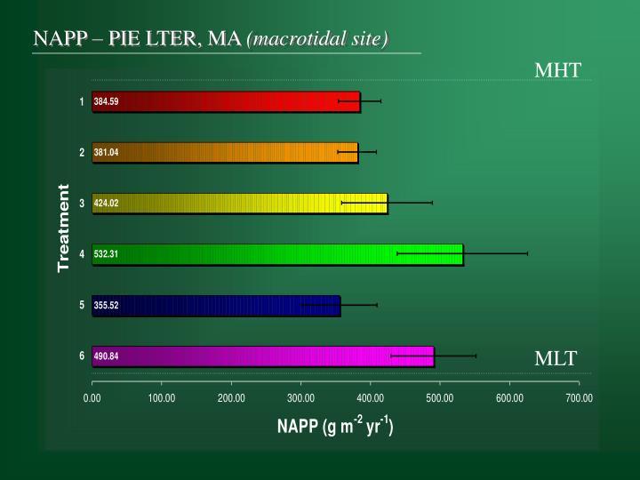 NAPP – PIE LTER, MA