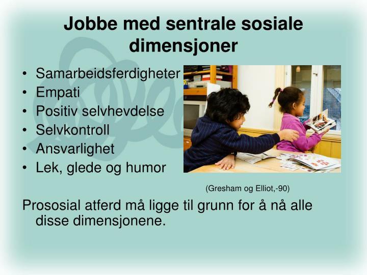 Jobbe med sentrale sosiale dimensjoner