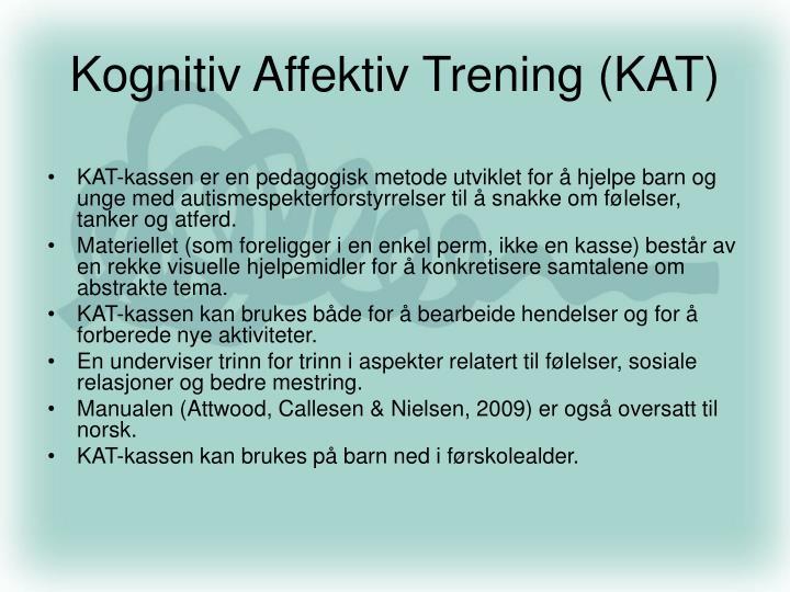 Kognitiv Affektiv Trening (KAT)