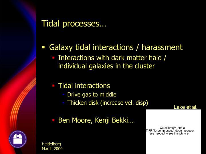 Tidal processes…