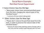 social norm example petrified forest experiment1
