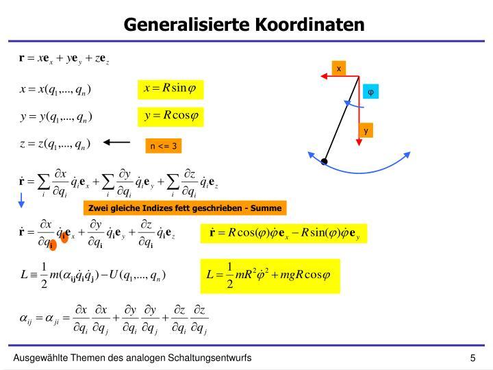 Generalisierte Koordinaten