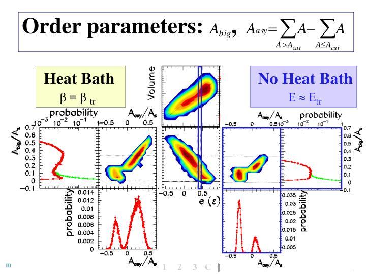 Order parameters:     ,