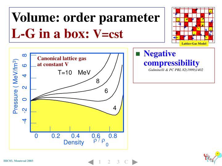 Canonical lattice gas