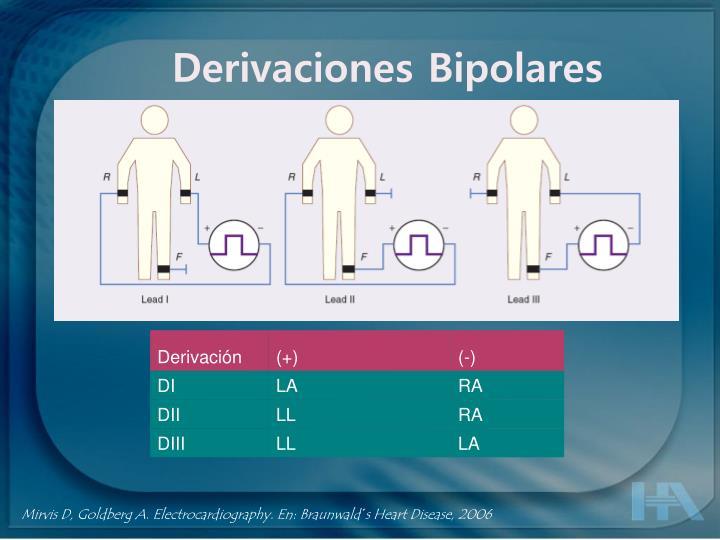 Derivaciones Bipolares