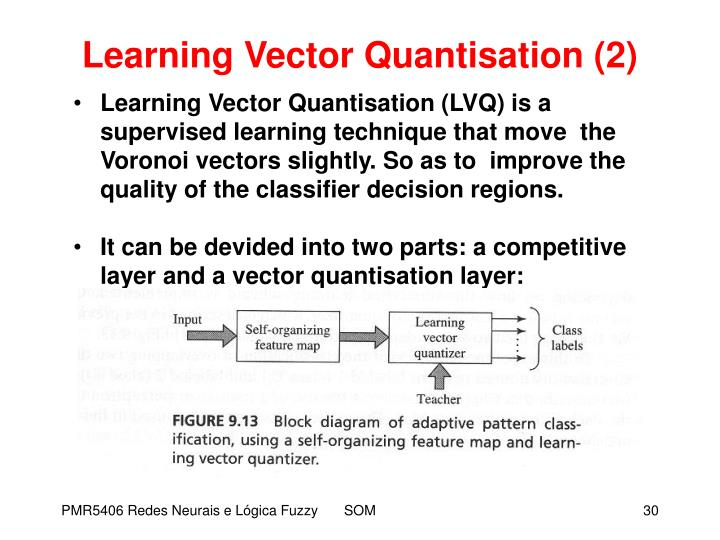 Learning Vector Quantisation (2)