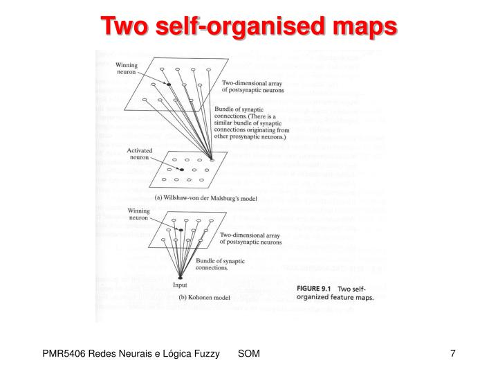 Two self-organised maps