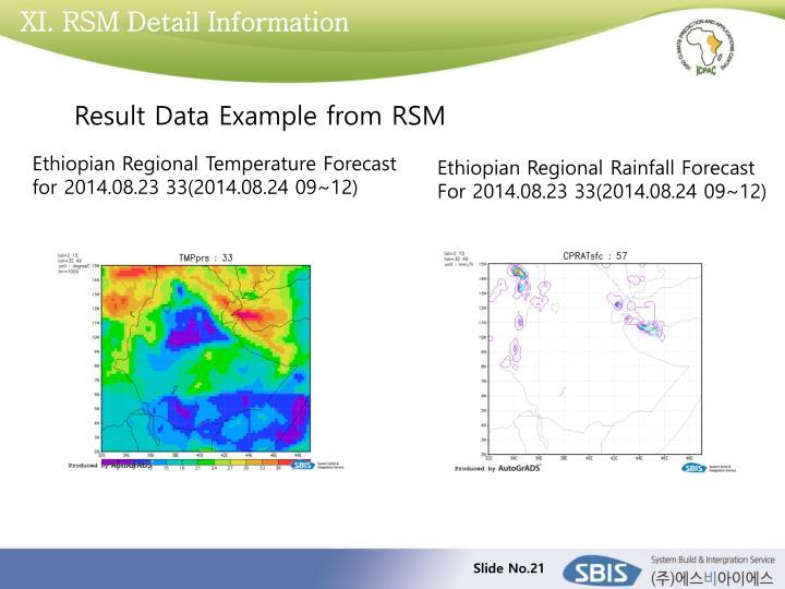 XI. RSM Detail Information