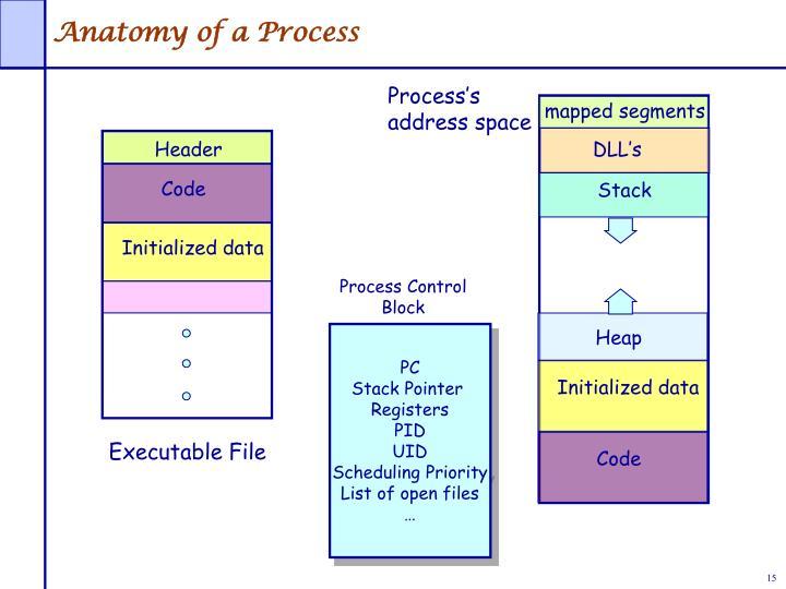 Process's