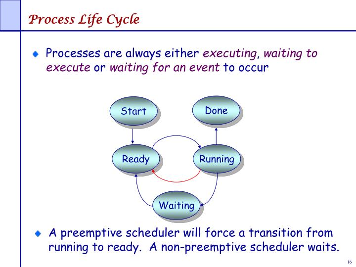 Process Life Cycle
