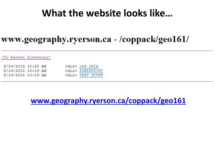 What the website looks like…