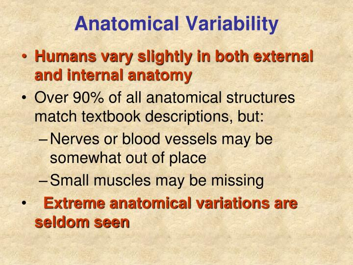 Anatomical Variability