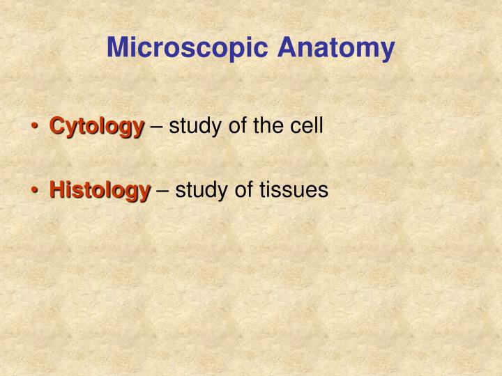 Microscopic Anatomy