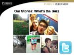 our stories what s the buzz