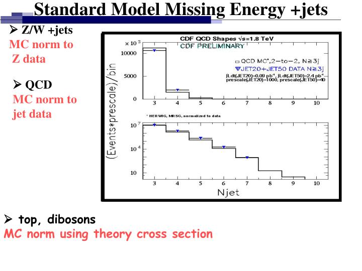 Standard Model Missing Energy +jets