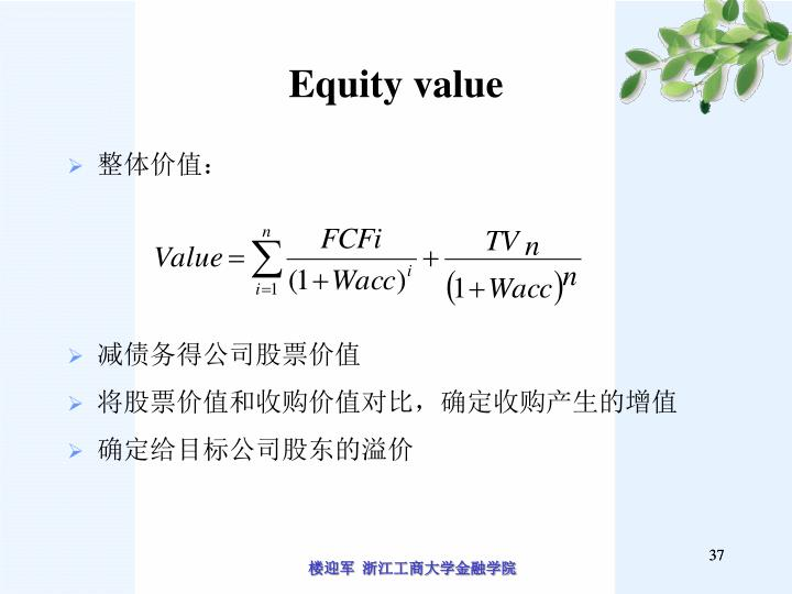 Equity value