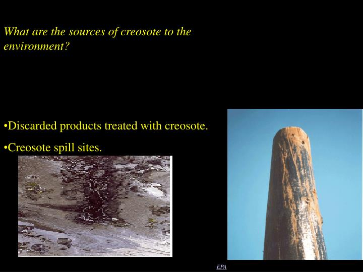 What are the sources of creosote to the environment?